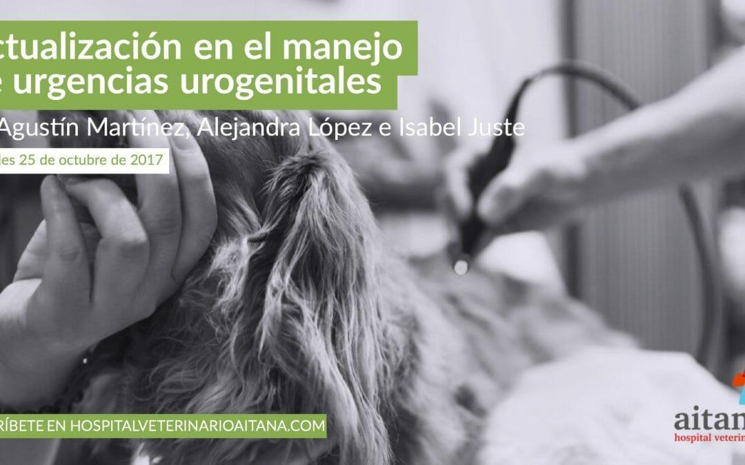 Actualización en el manejo de urgencias urogenitales